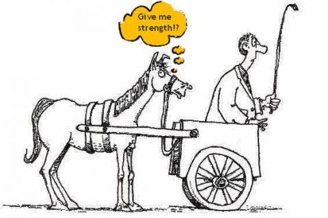 Cart Before The Horse Cartoon