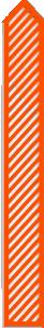 wd4t-orange-bar-8-300.png